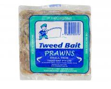 Prawns great bait for fishing